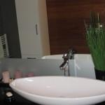 jasmina-kupatilo-8
