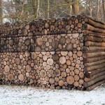 kabina-drva-za-ogrjev-2 (1)
