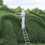 djed-zmaj-u-vrtu-1
