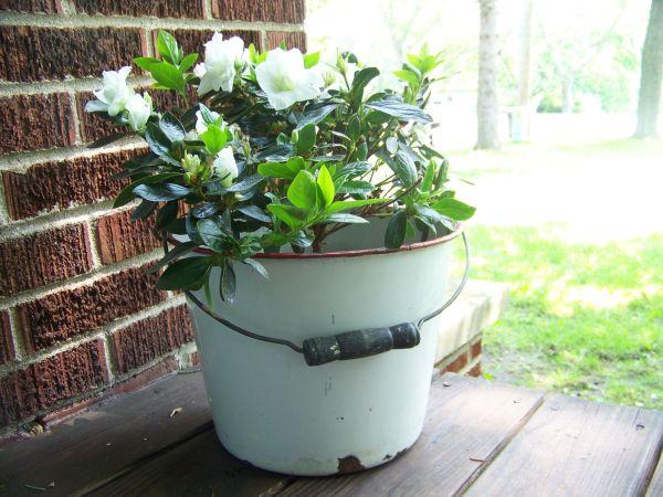 Odlične ideje za uređenje vrta i balkona – iskoristite stare stvari  KucaSno...