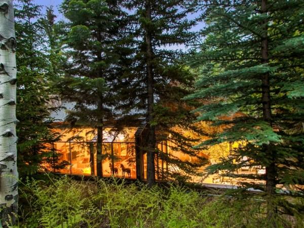 Kuća u šumi i šuma u kući  KucaSnova.com
