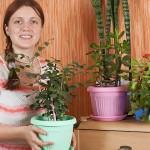 Biljke koje najbolje pročišćavaju zrak u domovima