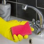 GORE OD WC ŠKOLJKE I SMEĆA: Ovo je definitivno najprljavija stvarčica u vašem domu
