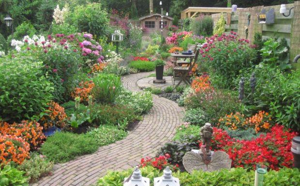 Posadite rajski vrt koji se sam održava: Ovo cvijeće zahtijeva minimum pažnje...