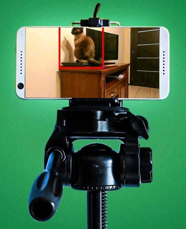 mobiteli (2)