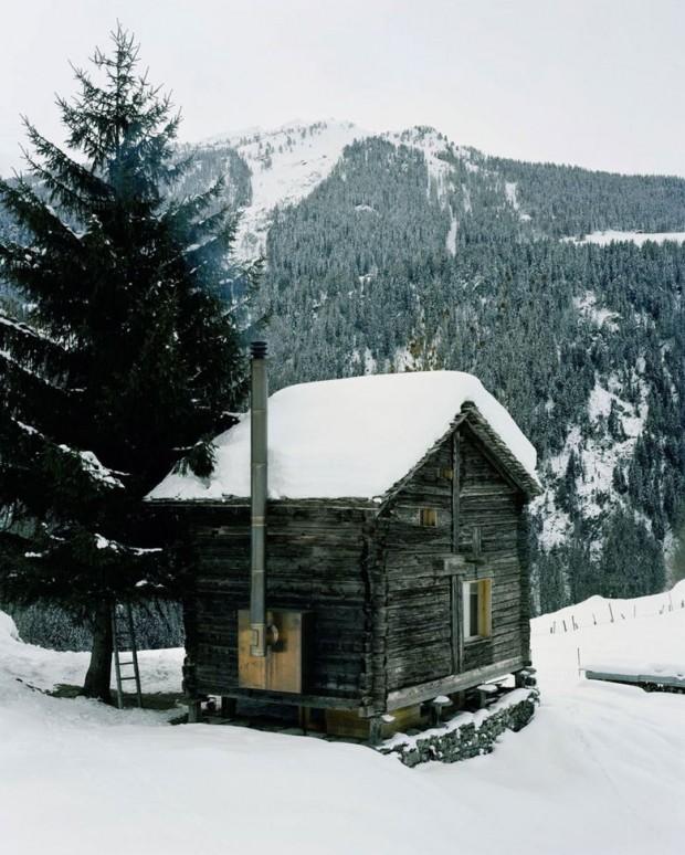 Kućica u Šumi (5)