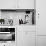 Jedna soba, jedna kuhinja (5)