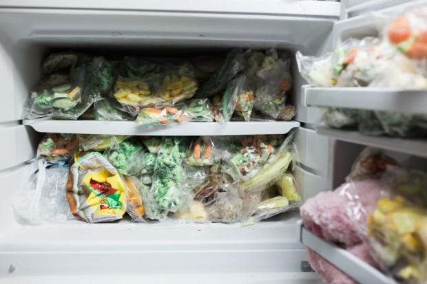 hrana-zamrznuta (1)