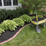 Sipajte ovo na korov i on će nestati: Više nećete morati čupati TRAVU U DVORIŠTU, a ne šteti biljkama!